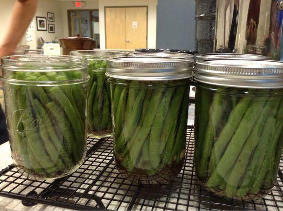 :: photo friday :: dilly bean season